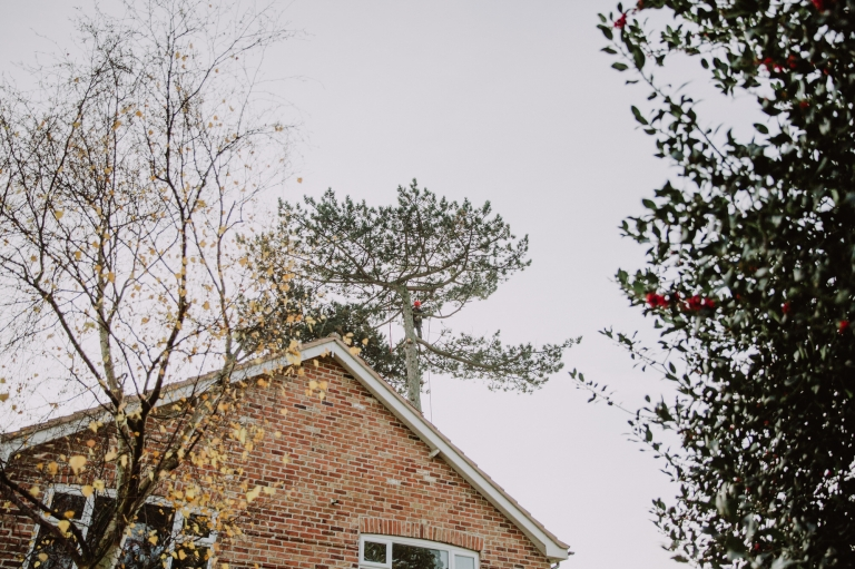 Promotional Photography Leicestershire - Affordable Tree Services LTD